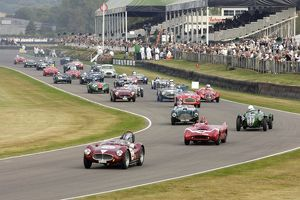 Goodwood Revival Classic racing cars on track multi 2000s