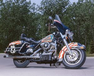 Harley Davidson Customised Police Special FLHTP